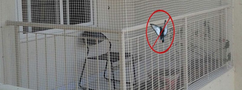 Pigeon Safety Nets for Balcony in Bangalore